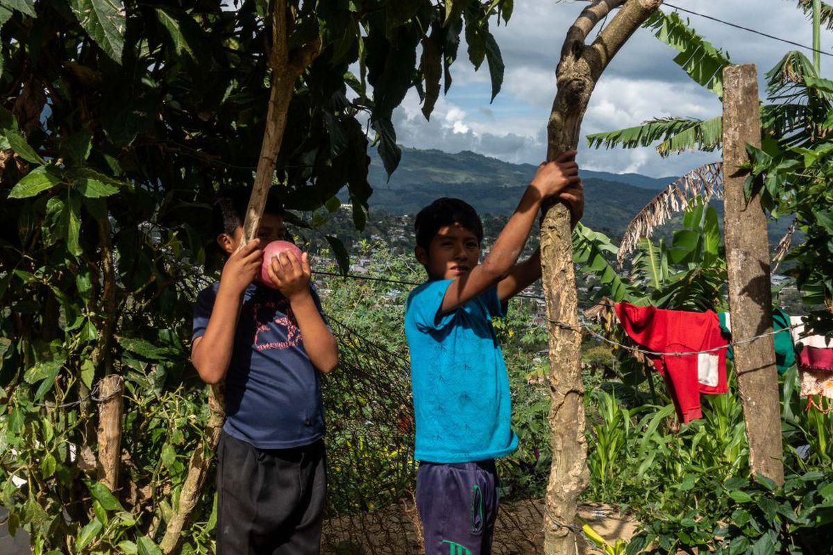 Coneval: Graves deficiencias en salud, educación y vivienda afectan al 25% del territorio mexicano