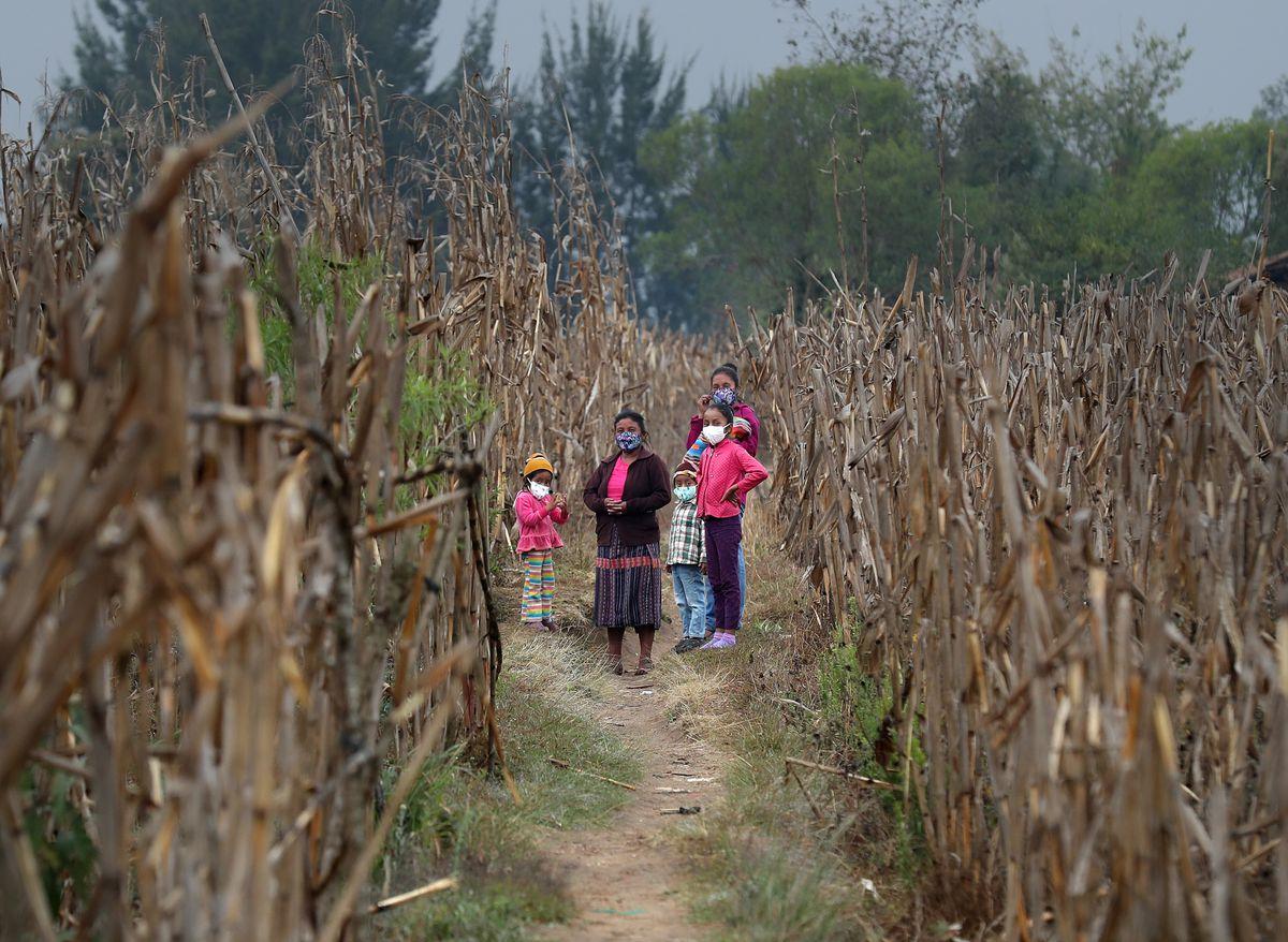 Día Mundial de la Nutrición: Guatemala: la necesidad de invertir en nutrición  Red de expertos  Planeta del futuro