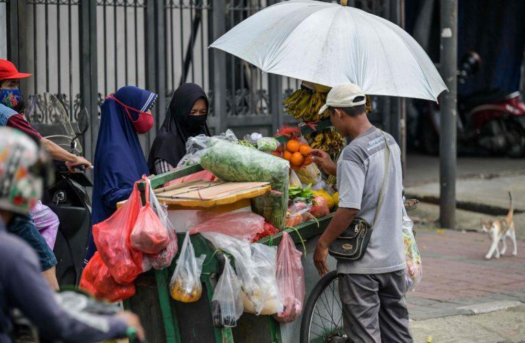 El sector informal representa un tercio del PIB y el 70% del empleo en los países en desarrollo  Ciencias económicas