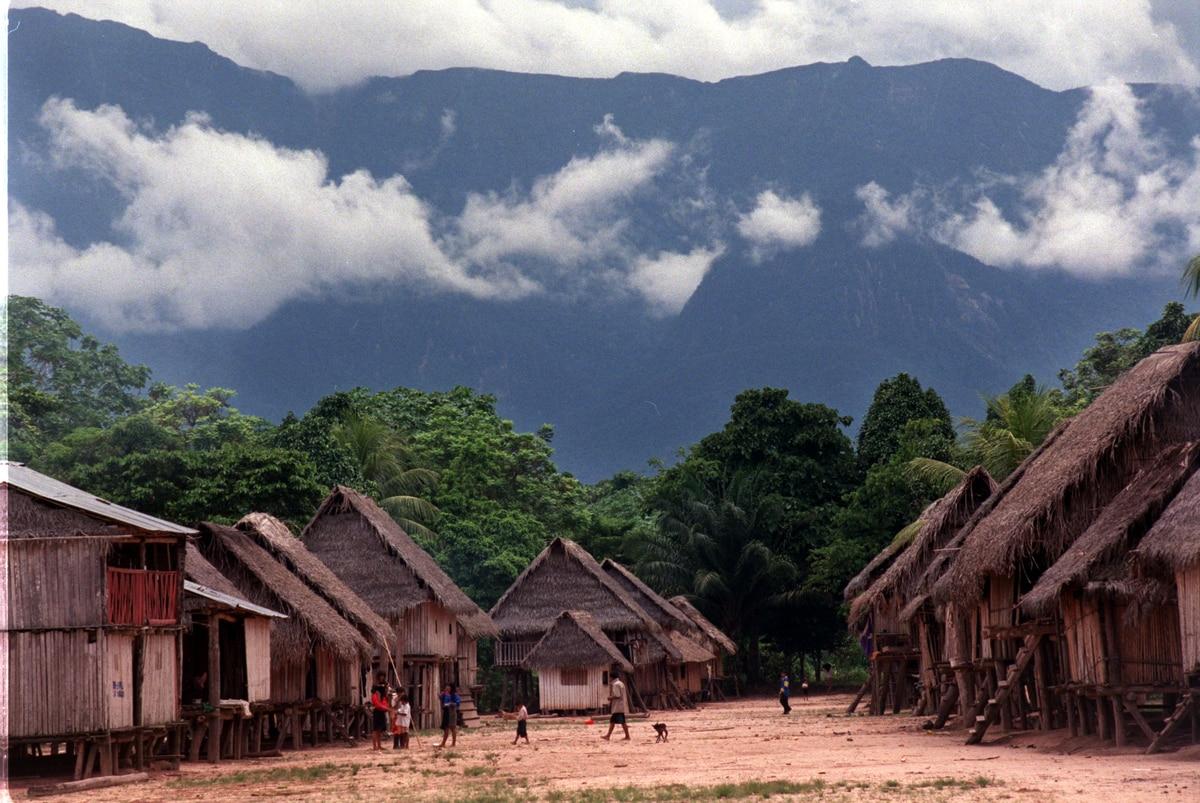 Amazonía: la lucha del pueblo Kakataibo por su territorio y sus vidas  En primera linea  Planeta del futuro