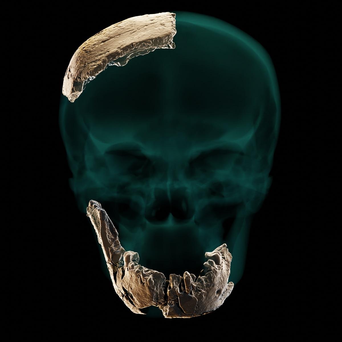 Carrera Nesher Ramla: Un misterioso grupo humano descubierto en Israel que puede tener su origen en los neandertales    Ciencias