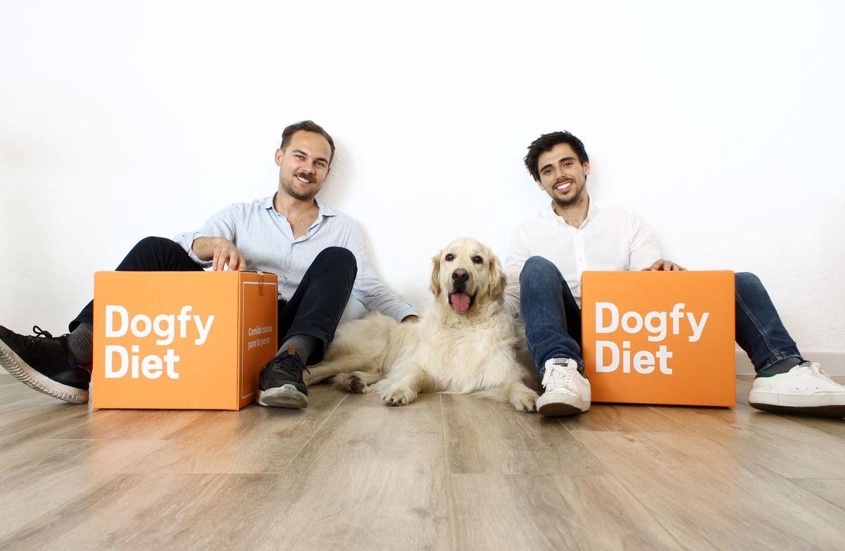 Dieta Dogfy: mi perro come pollo, pavo, ternera y salmón  Negocio