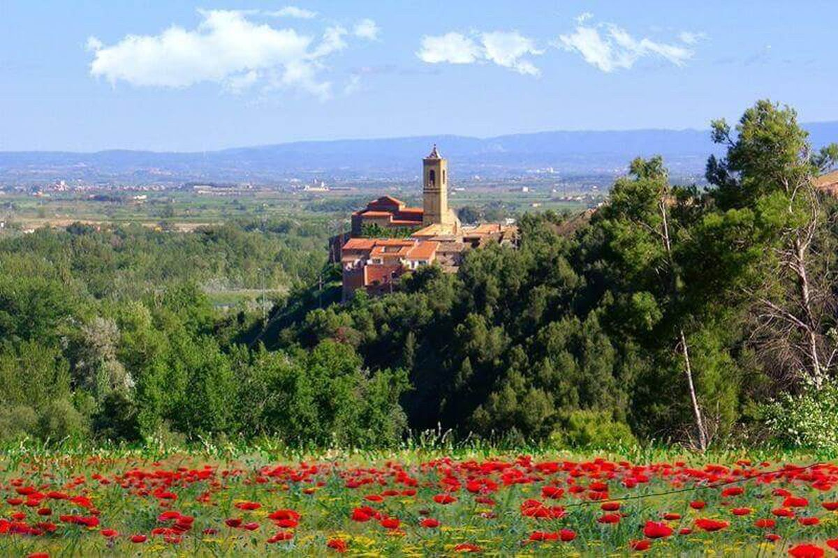 El renacimiento del mundo rural con fibra y 5G  Cataluña