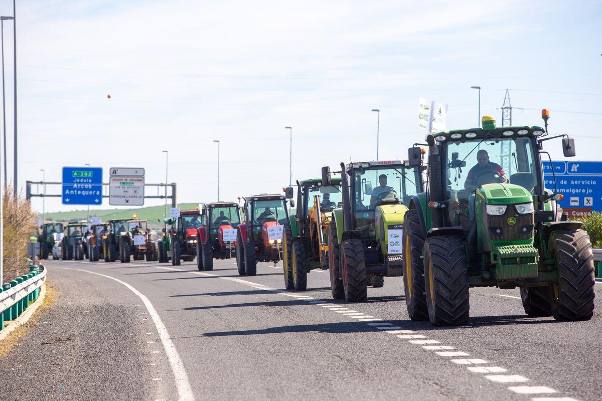 El sector agrícola culpa de la Política Agrícola Común solo a los verdes  Ciencias económicas