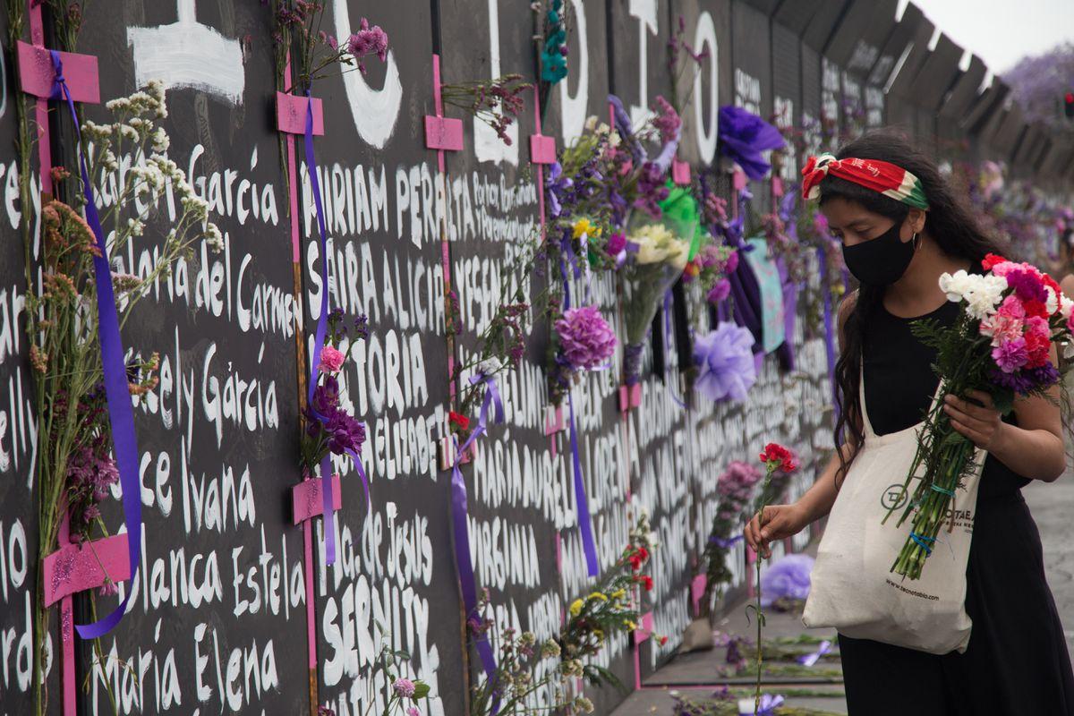 Elecciones en México 2021: Las fisuras de Morena: jóvenes, mujeres y clase media  Elecciones mexicanas 2021