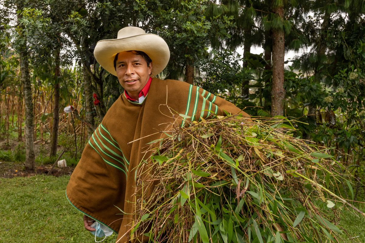 Elecciones en Perú 2021: Pedro Castillo, el candidato descalzo  Internacional