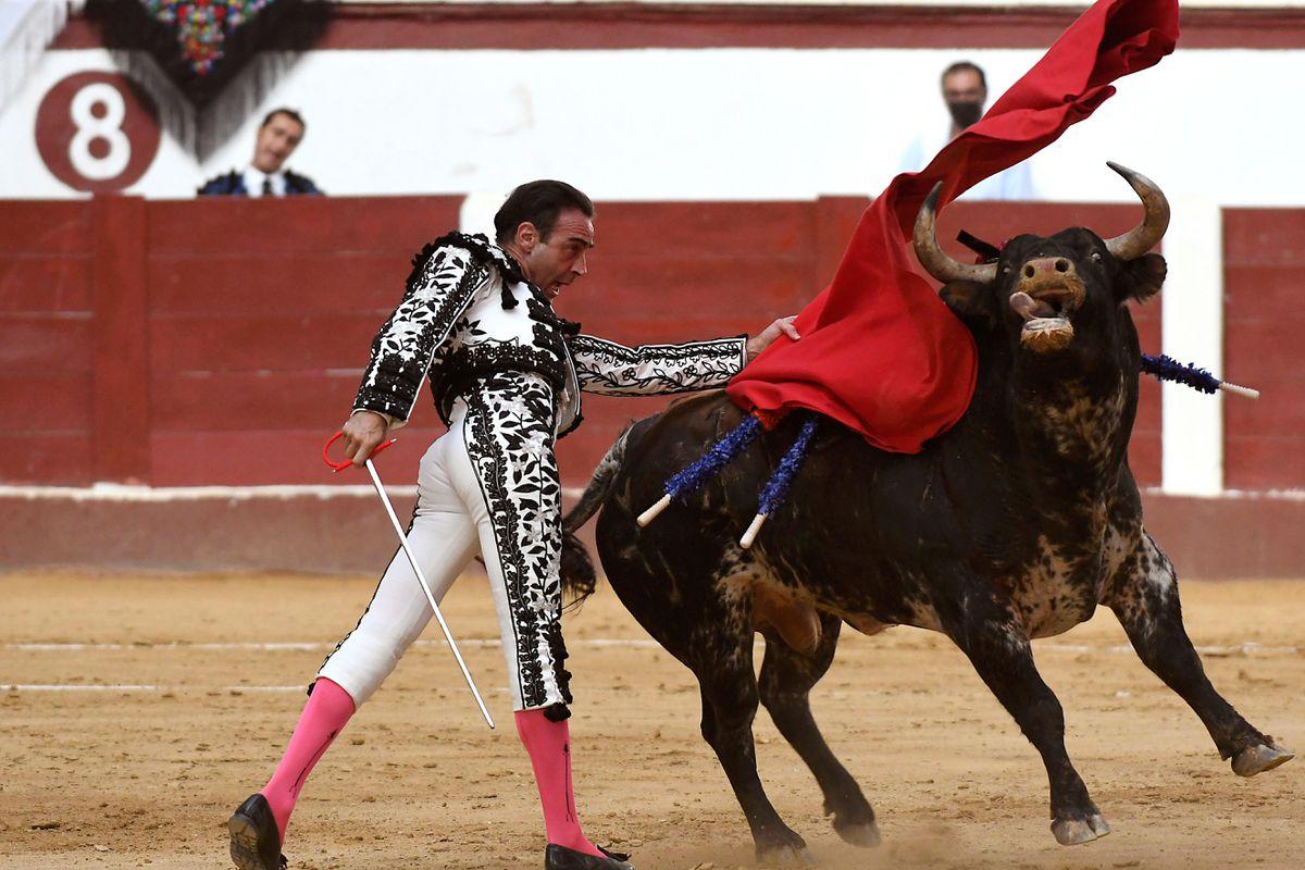 Enrique Ponce anuncia su retiro indefinidamente  Cultura