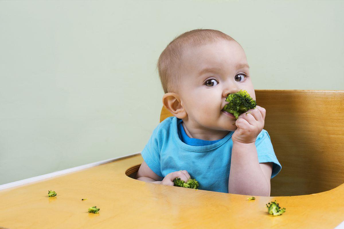 Por qué es importante comer verduras desde la dentición  Comer sano en familia