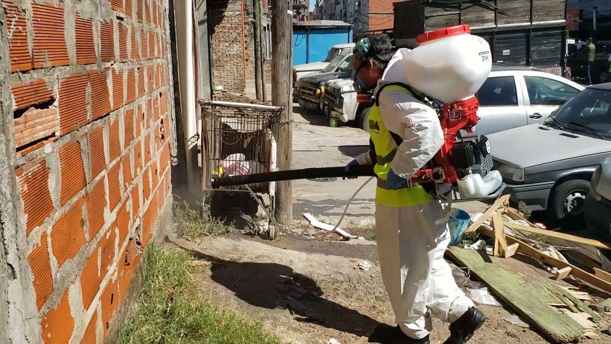 Redes de vecinos, la mejor herramienta contra el dengue  Planeta del futuro