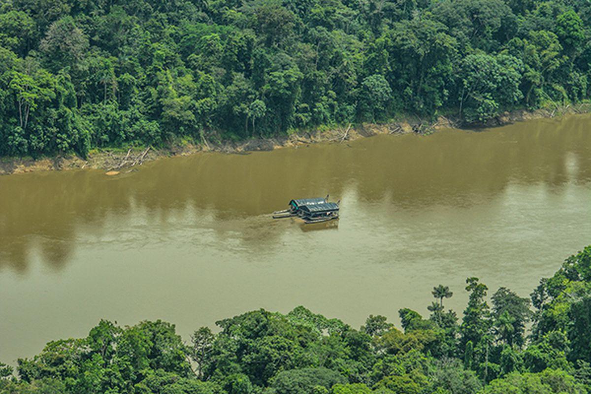Termómetro económico y social de Estados Unidos: el mercurio dorado que amenaza al Amazonas    TERMÓMETRO ECONÓMICO Y SOCIAL AMERICANO