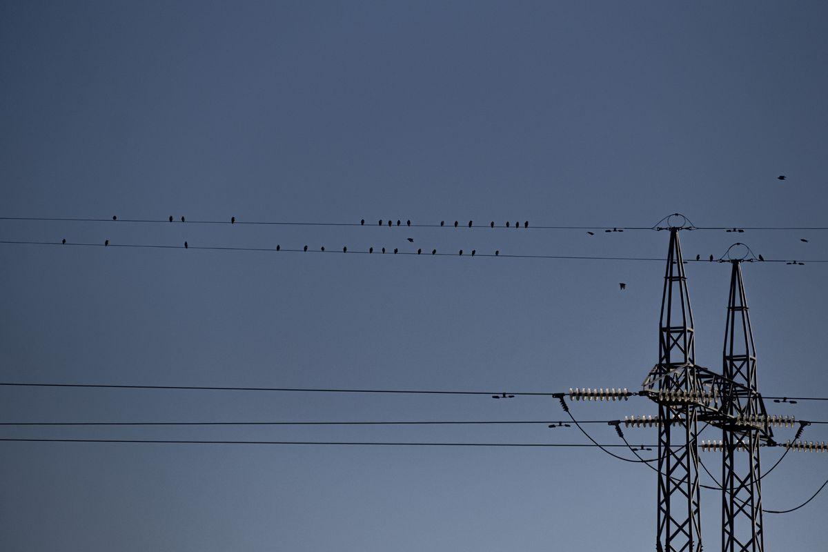 El precio mayorista de la electricidad alcanza su máximo histórico de casi 100 euros por MWh  Ciencias económicas