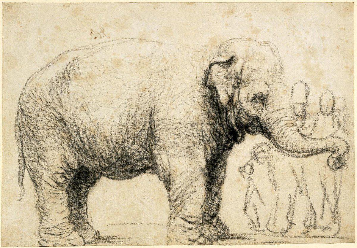 Elefante para Rembrandt  Cultura