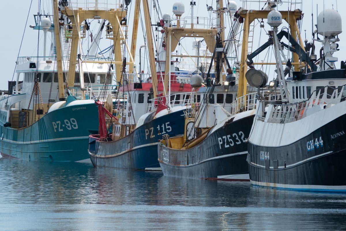 Escándalo en los Países Bajos por los trucos del gobierno para que Bruselas obtenga más licencias para la pesca con electrodos    Ciencias económicas