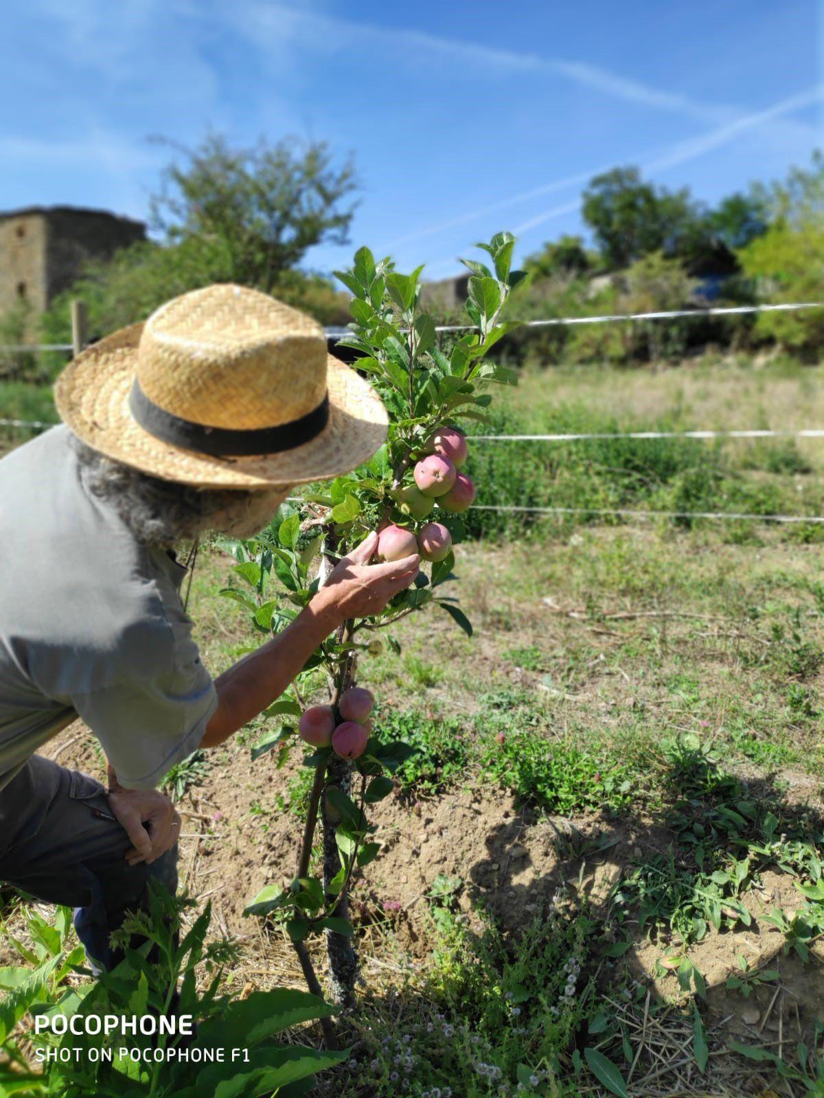 Guara.bio: Campesino o pastor por unos días, tu eliges  Negocio