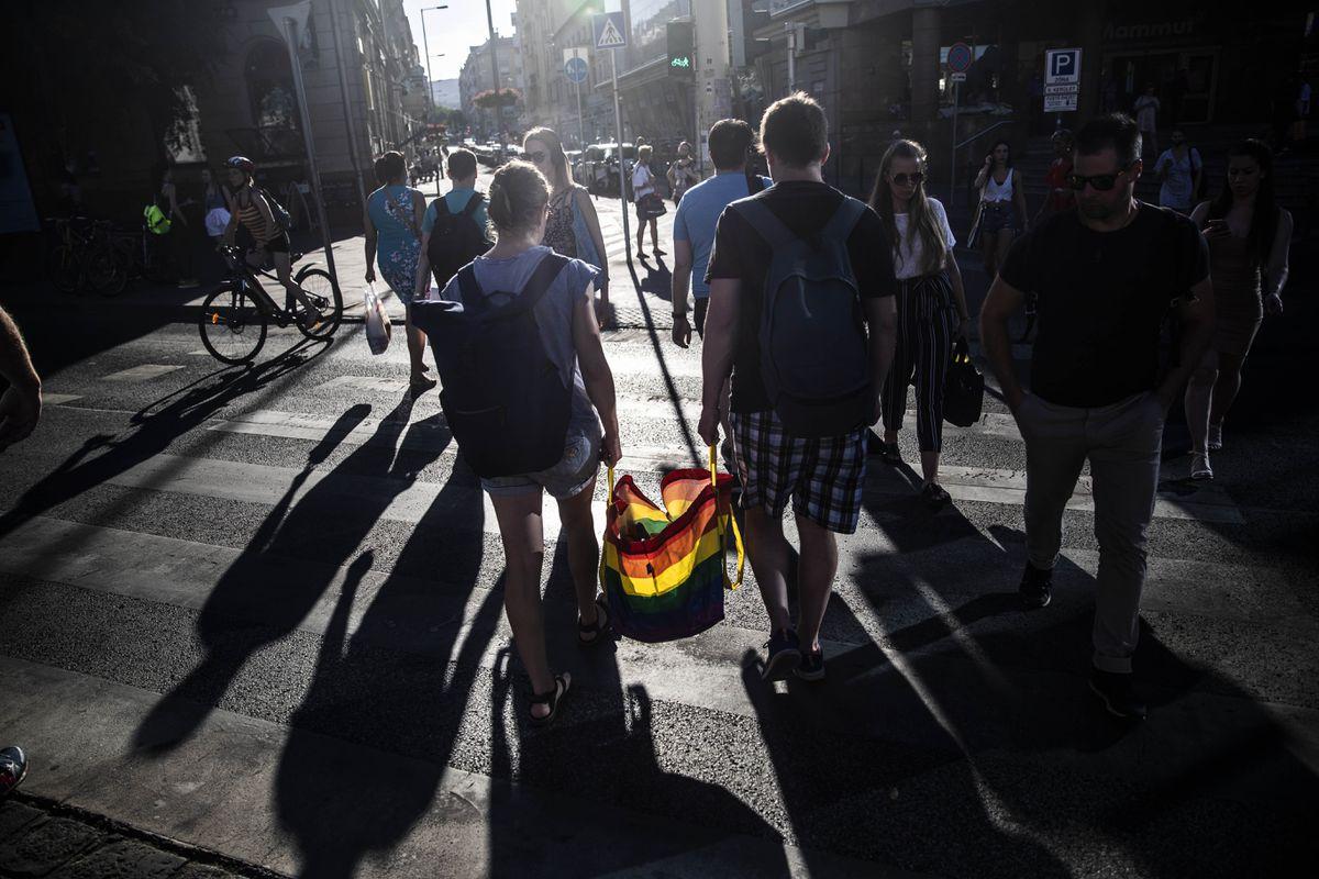 La bandera del arco iris se izó contra la Hungría de Orban  Internacional