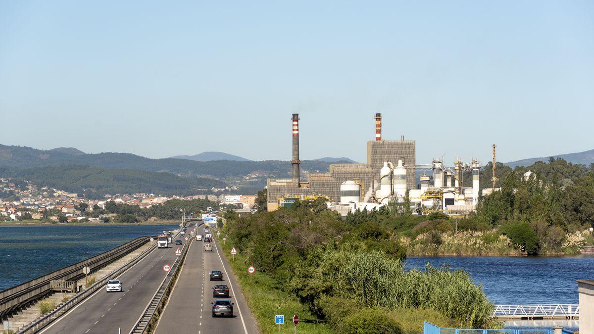 Las acciones de Ence caen con fuerza por la incertidumbre sobre su fábrica de Pontevedra    Ciencias económicas