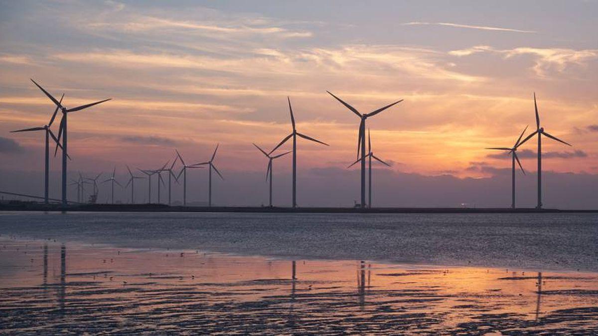 Medio ambiente: Bruselas regula los bonos verdes para aumentar los problemas de deuda con criterios medioambientales |  Ciencias económicas