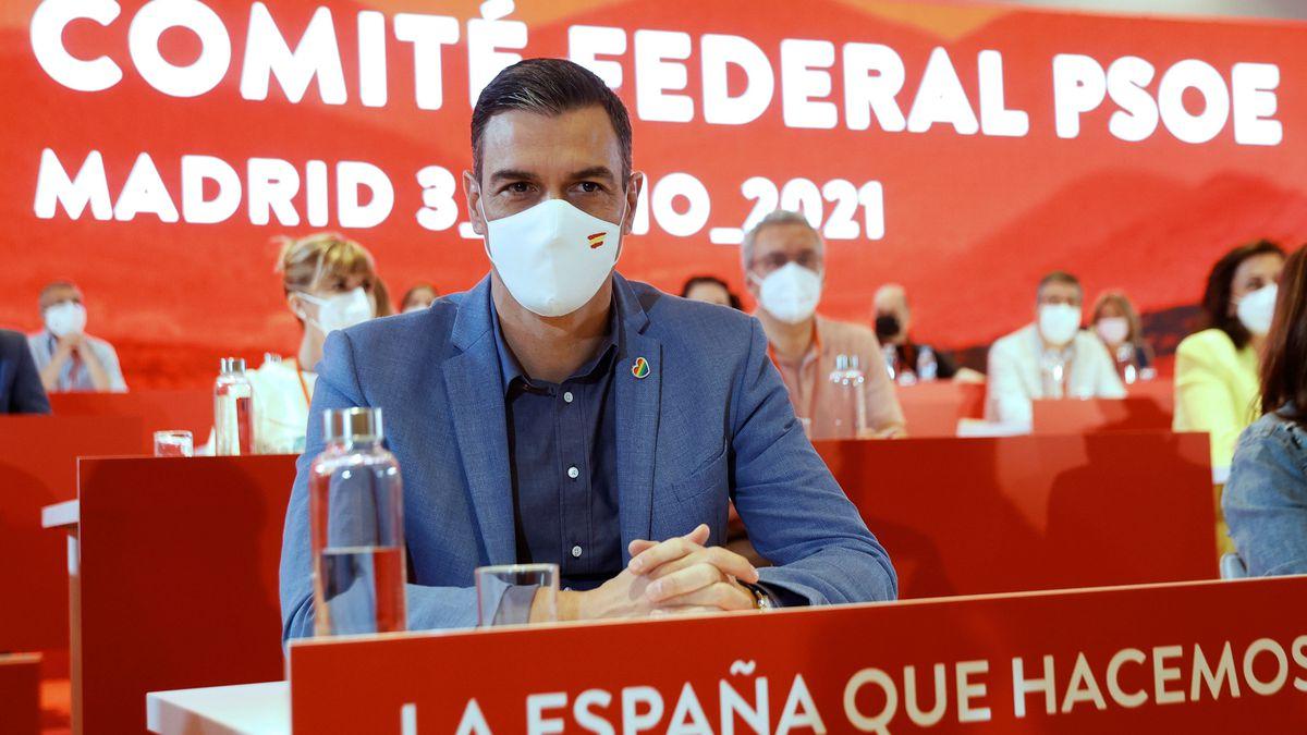 Reestructuración del gobierno: Sánchez vuelve al PSOE  Opinión