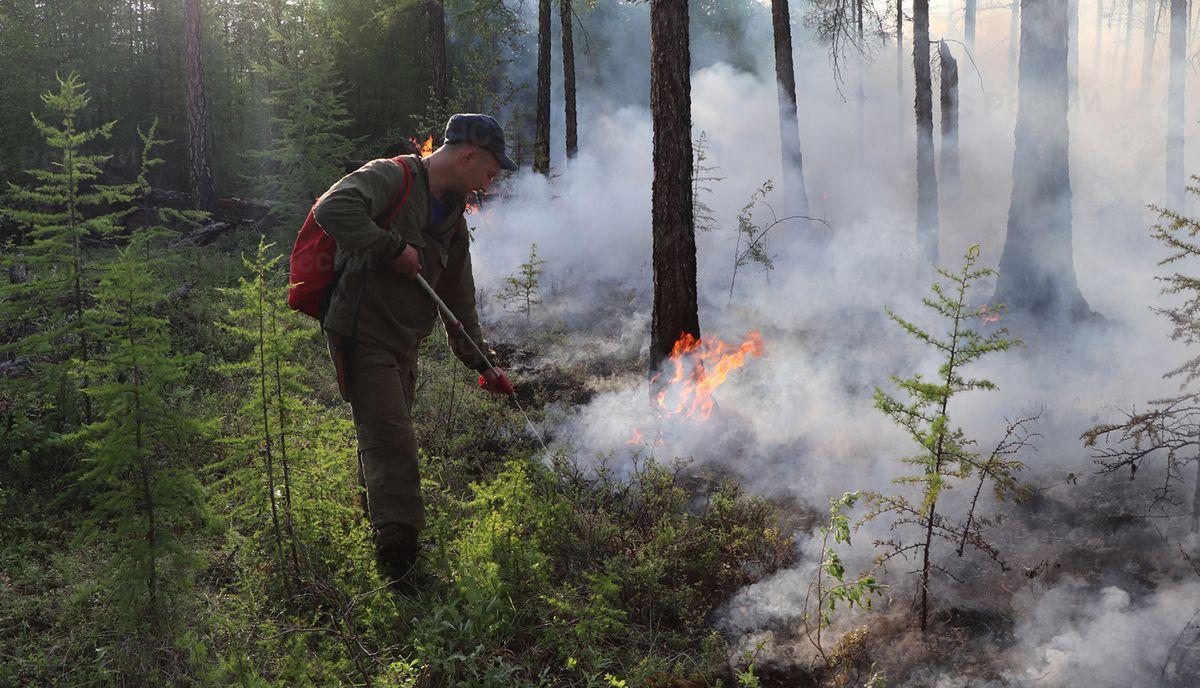 Siberia arde: Rusia moviliza ejército contra incendios forestales, que ya envuelven 1,4 millones de hectáreas en Yakutia |  Cambio climático  Clima y medio ambiente