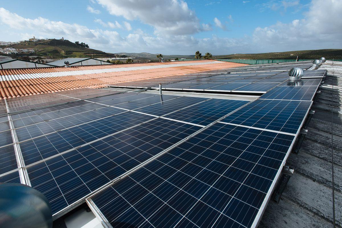 Costos de transición energética  Ciencias económicas