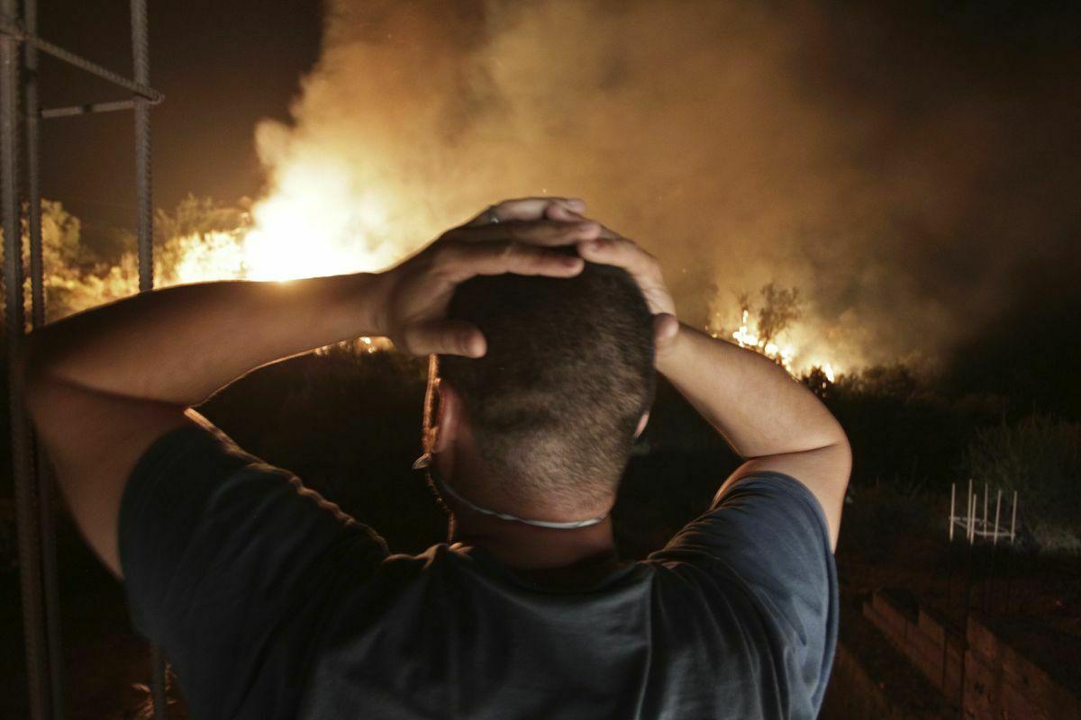 El incendio provocó al menos 65 muertos en Argelia  Internacional