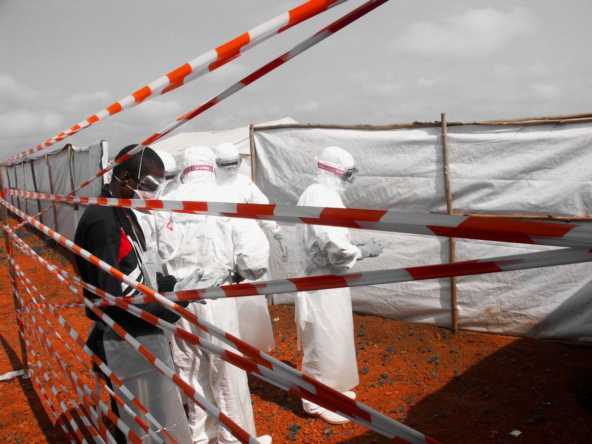 Guinea registra una muerte por virus de Marburgo, la primera en África Occidental  Planeta del futuro