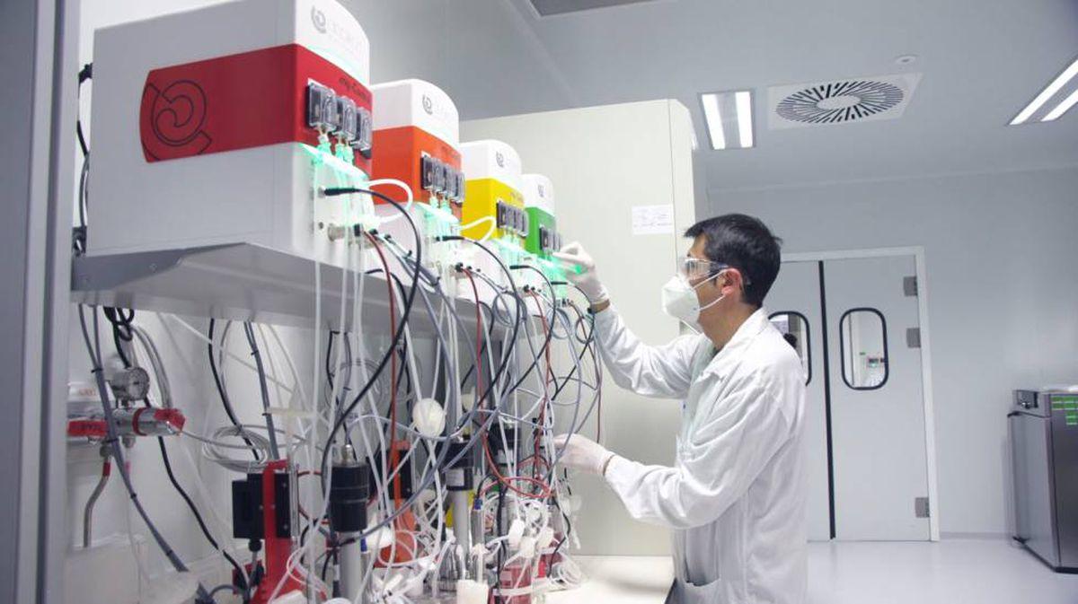 Hipra: Ensayo clínico humano autorizado de una de las vacunas españolas contra el coronavirus    Ciencia