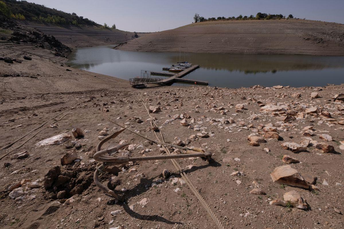 La rabia de Riccobayo por su tanque enfrenta al gobierno contra Iberdrola  Ciencias económicas