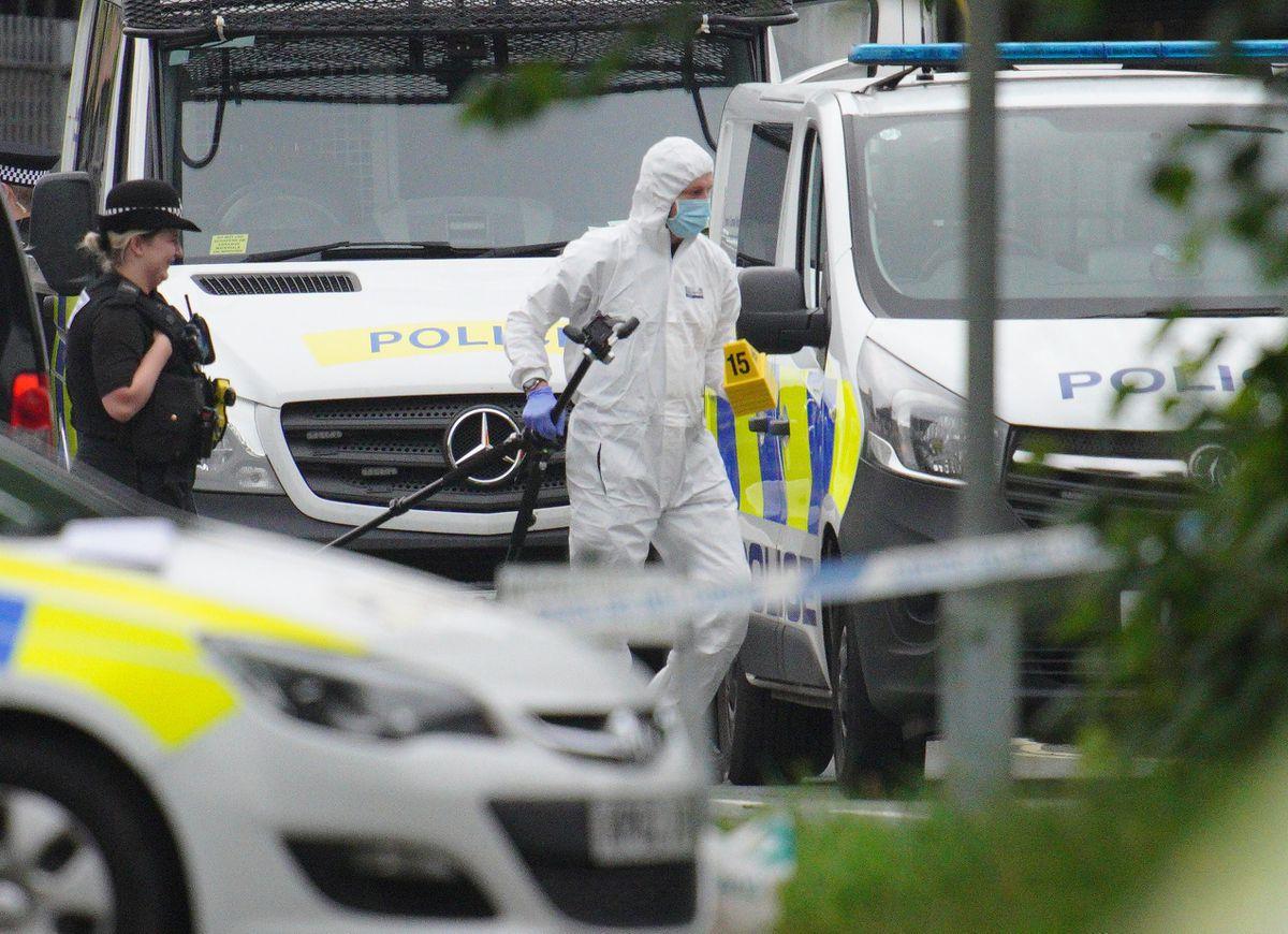 Un joven mata a cinco personas, incluida una niña, en Gran Bretaña antes de suicidarse  Internacional
