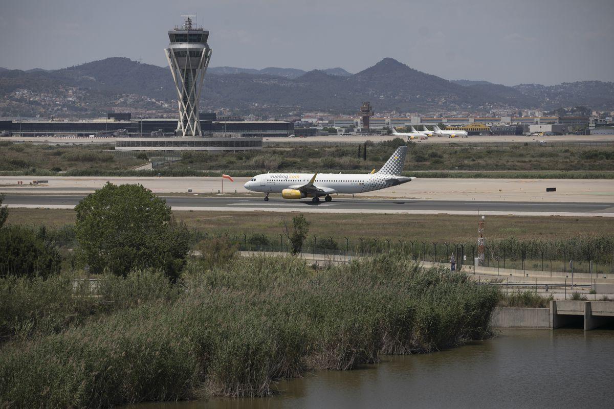Aragonés sale del plan de ampliación de El Prat a área protegida  Ciencias económicas