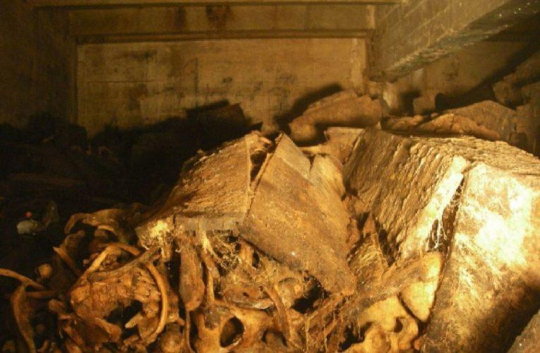 Comienza la exhumación de 77 personas en el Valle de los Caídos  España