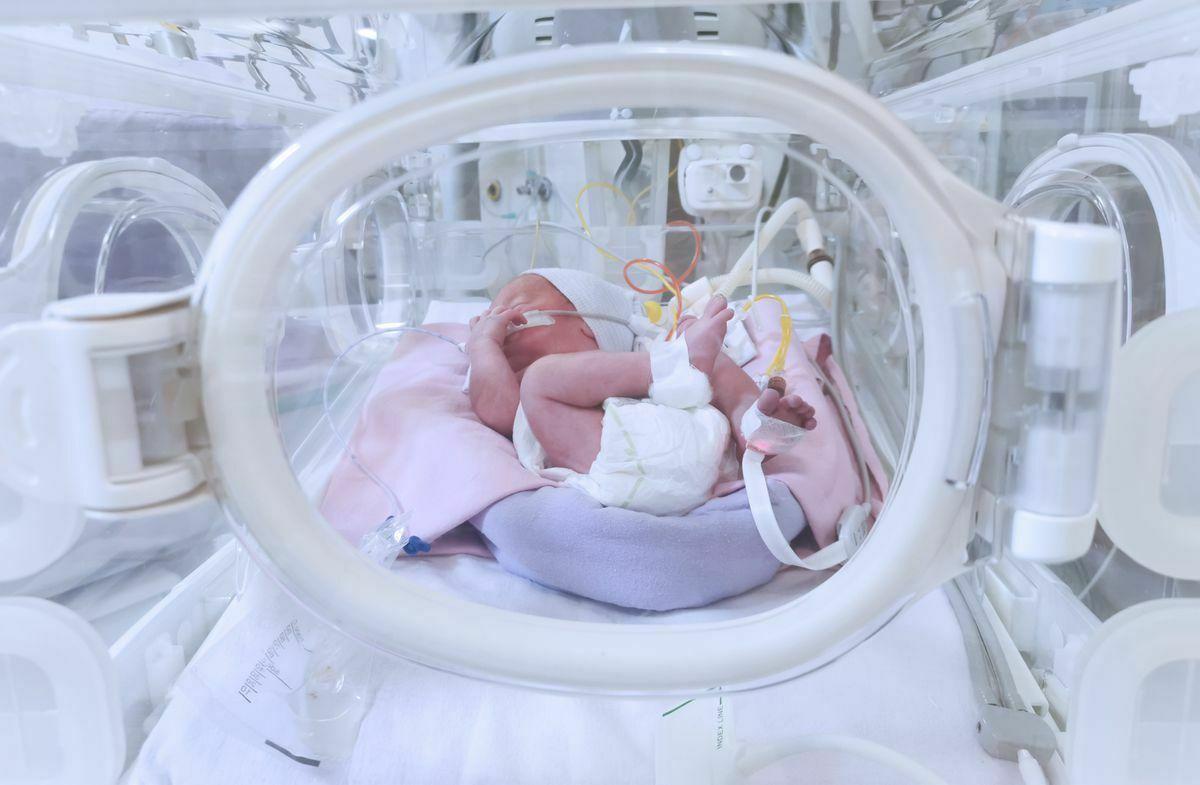 El Hospital de Logroño sustituyó por error a dos bebés en 2002  Comunidad