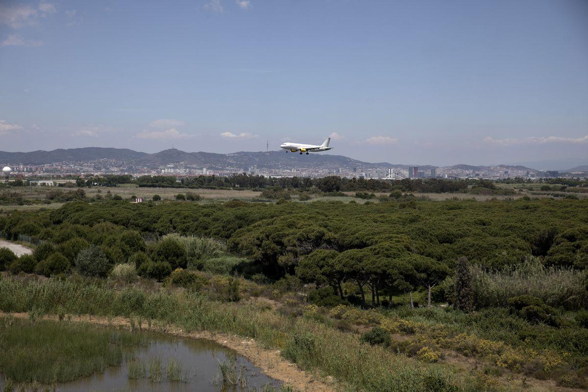 El gobierno ahora está convirtiendo a Ricardo Lagoon en una restricción a la expansión del aeropuerto  Cataluña