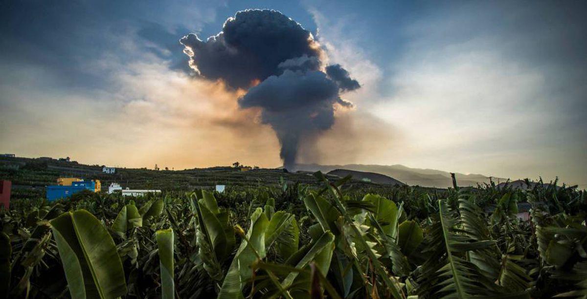 El volcán la Palma adquiere características hawaianas, con más emisiones de lava  Comunidad