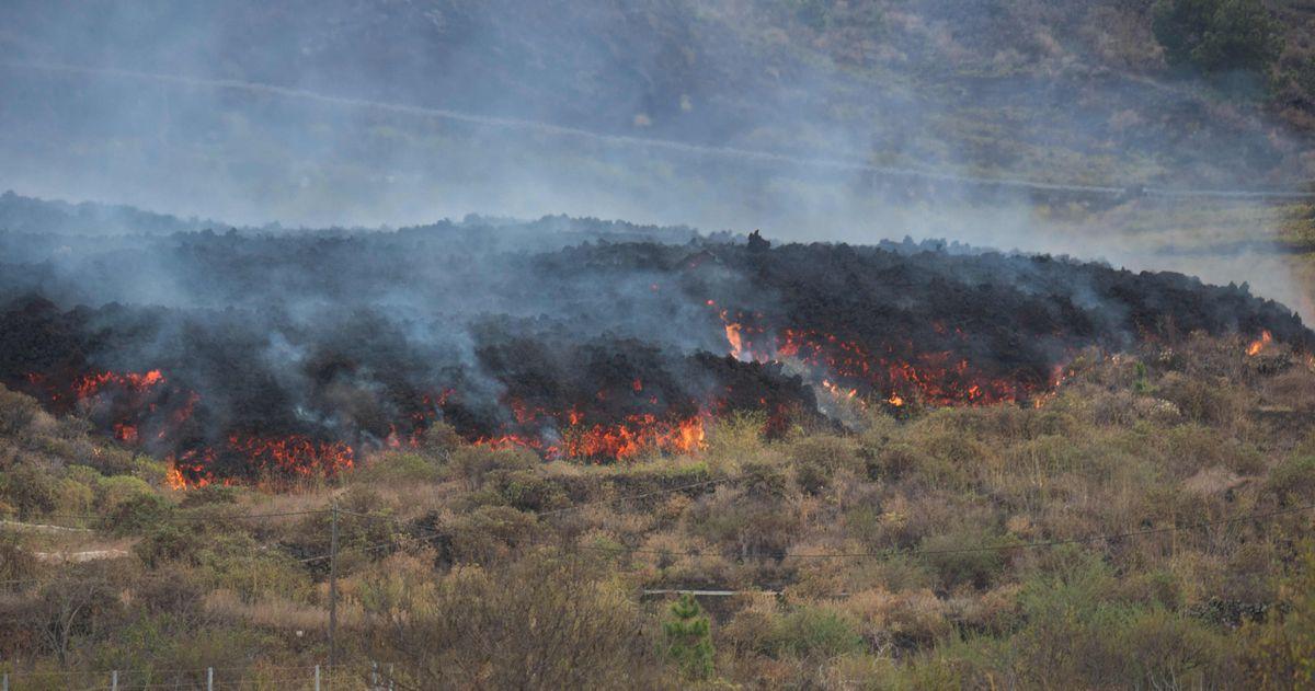 La lava del volcán de La Palma fluye a través de nueve estuarios y se espera que llegue al mar por la noche    Ciencias