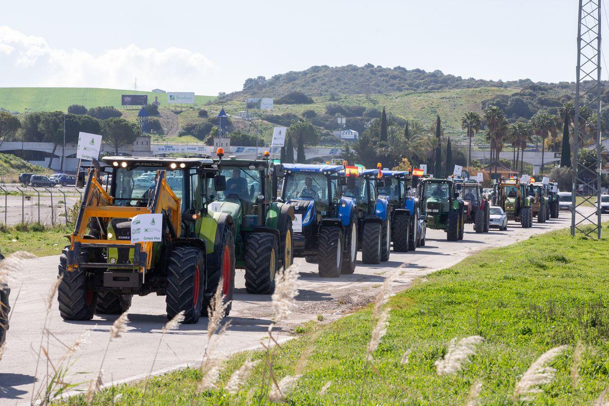 La provincia de Andalucía se plantó ante las nuevas ayudas agroambientales  Ciencias económicas