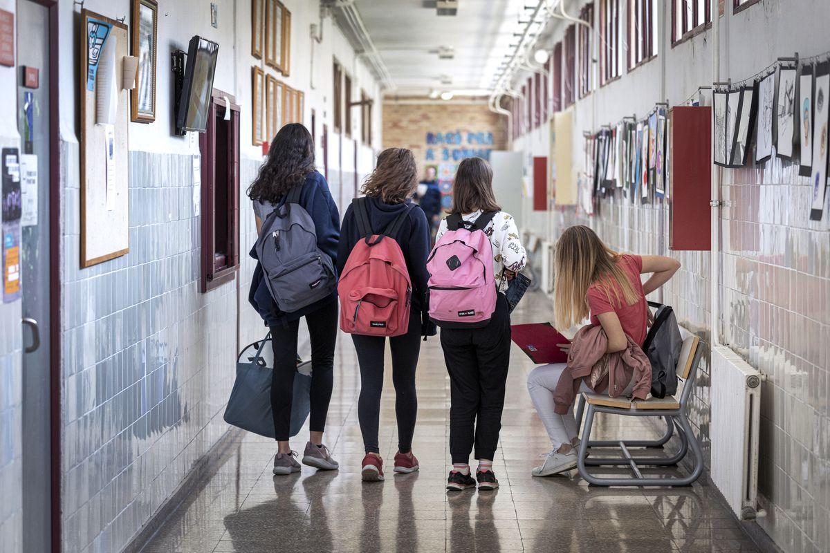 Lomloe: Más optativas en ESO y dos nuevas modalidades en el grado: así cambian las instituciones con la reorganización que prepara el gobierno |  Educación