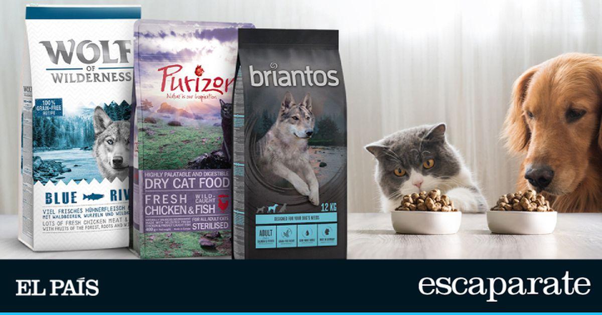 Mejore la dieta de su perro o gato con estos diez piensos sin cereales de primeras marcas |  Escaparate