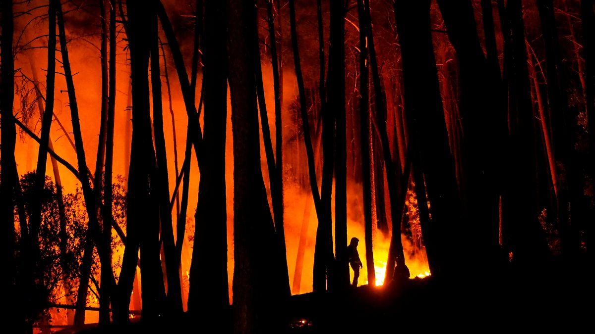 Ribeira Sacra: El incendio de Lugo continúa su avance tras la devastación de 900 hectáreas  España
