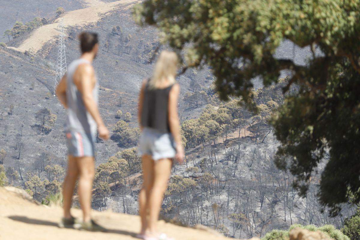 Se considera controlado el incendio de Sierra Bermeja  España