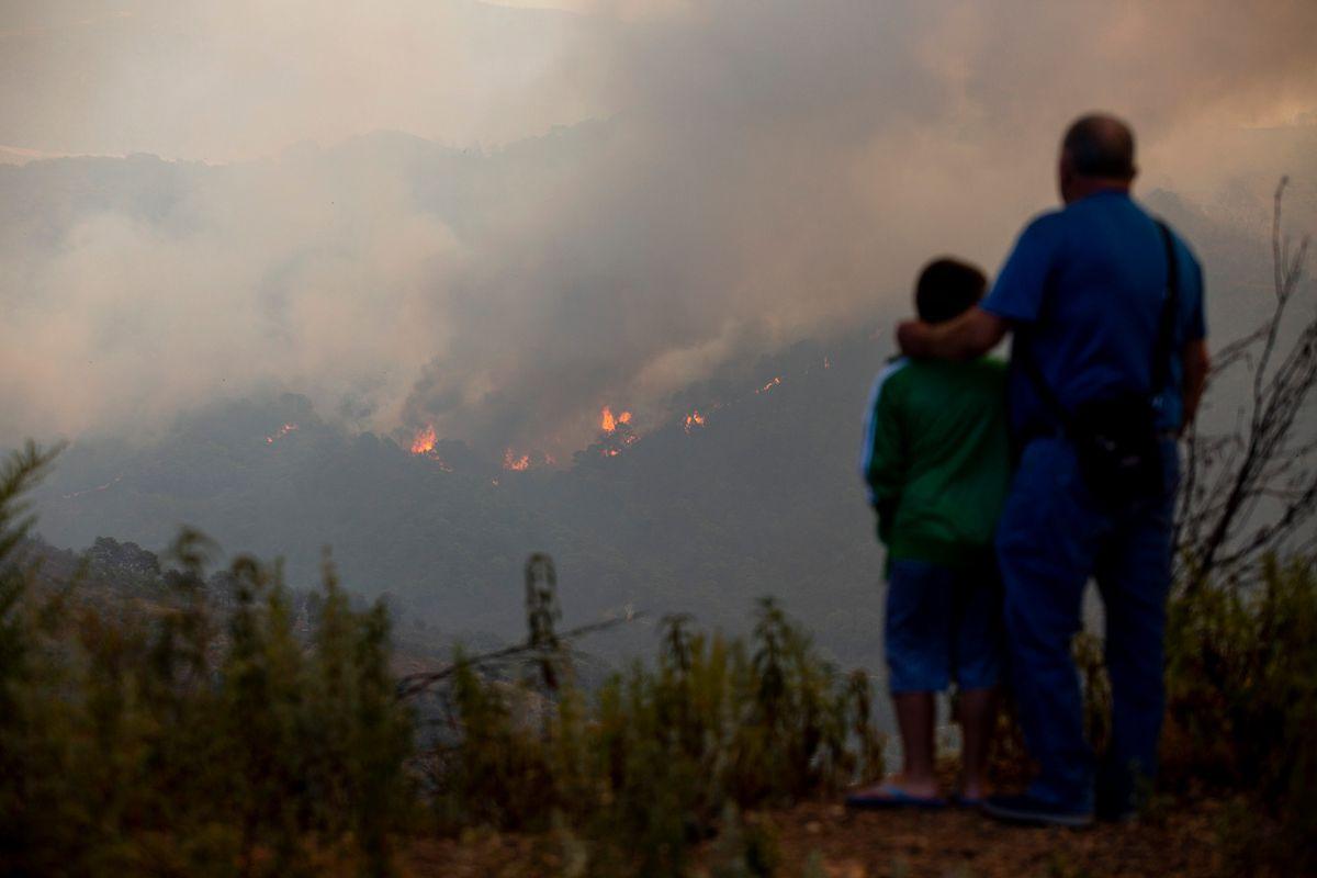 Sierra Bermeja: Incendio obliga a expulsar a casi 800 vecinos de varias urbanizaciones de Estepona |  España