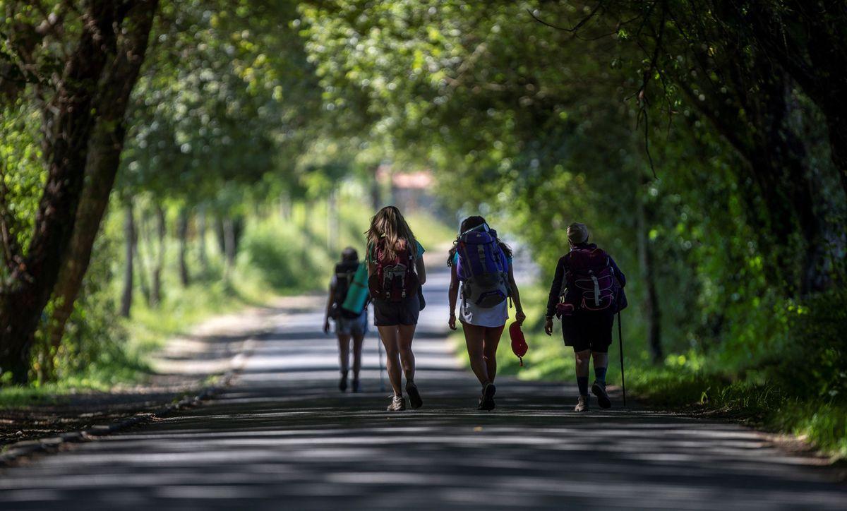 Tarifa y Santiago, los ganadores de la temporada turística  Ciencias económicas