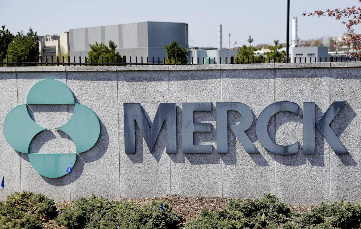 Pharmaceutical Merck dice que sus píldoras experimentales Covid reducen a la mitad la muerte  Comunidad